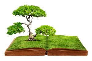 big-tree-growth-from-a-book