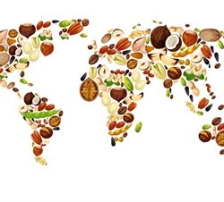 World map of vegetables